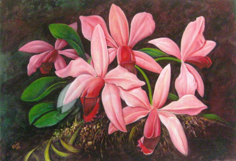 Lienzos al oleo, Originales del pintor Eliobaldo Perez - Elio's ...